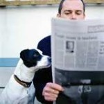 guy:dog reading paper