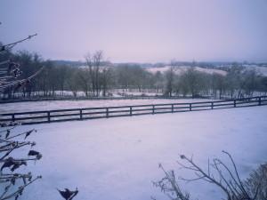 snow here