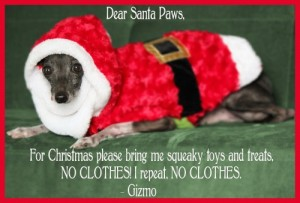 Santa-Paws-Christmas-card-holiday-dog-pet-funny-hilarious-saying-sayings-500x338